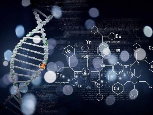 биохимия перевод